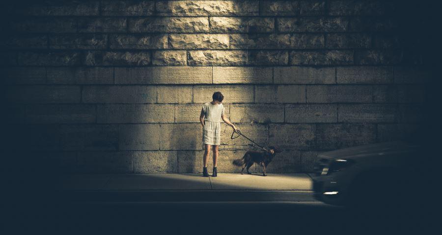 Geeignete LED Taschenlampen für Hundehalter
